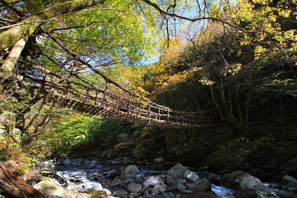 How to visit the iya valley vine bridge japan guide