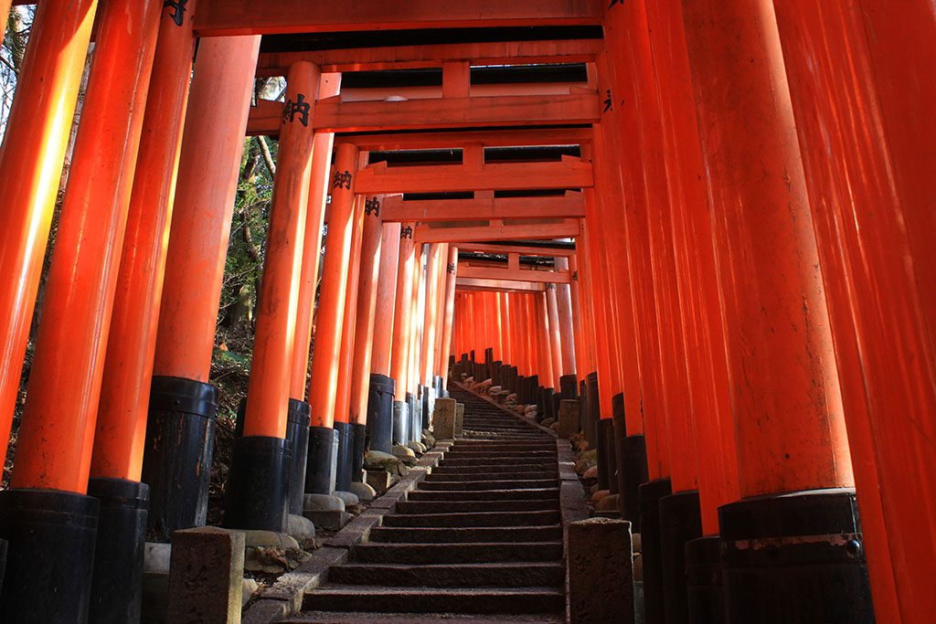 The Red Gates of Fushimi Inari Japan