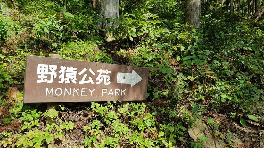 This way to the Snow Monkey Park