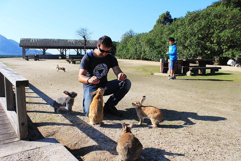 Feeding rabbits on Rabbit Island in Japan