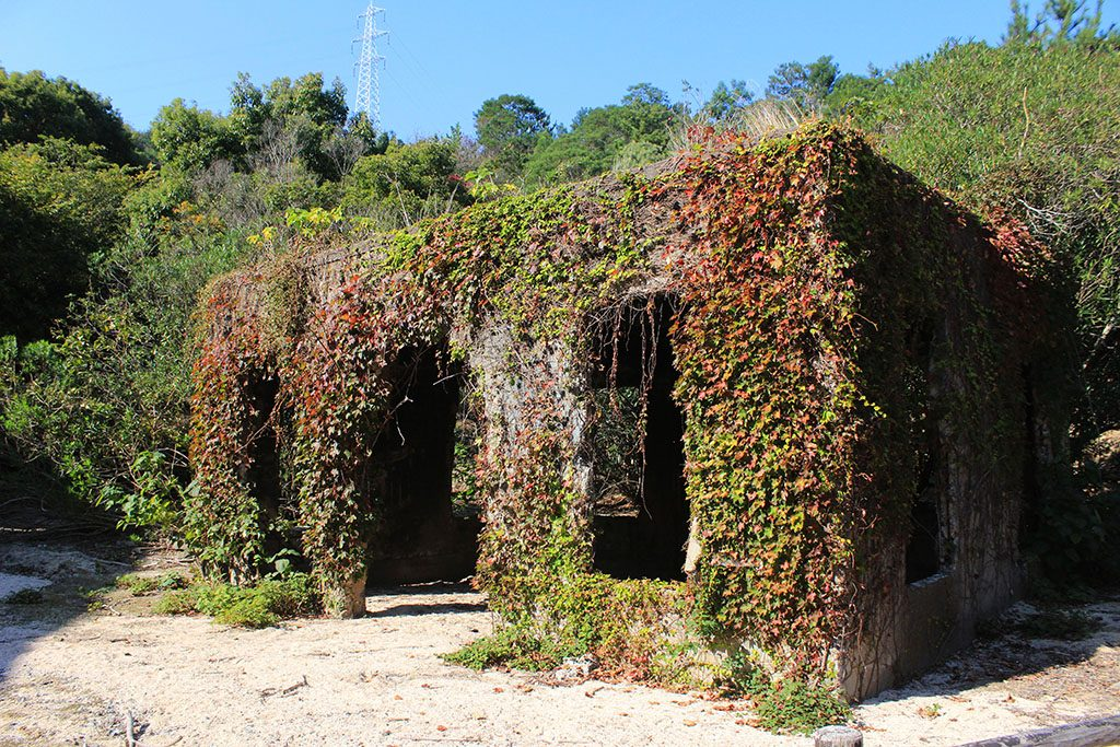 Japan's spookey chemical weapon factory on rabbit island