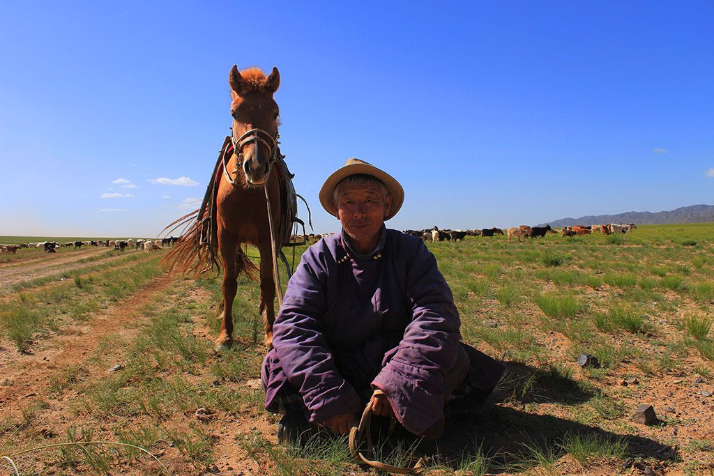 A Mongolian cattle herder near the Gobi