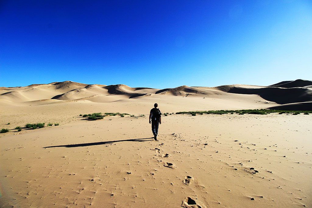 Guide to the Mongolian Gobi Desert