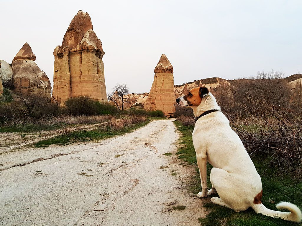 Walking through Love Valley Cappadocia