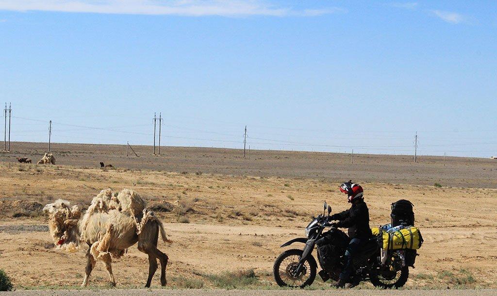 Adventure motorcyling in Uzbekistan