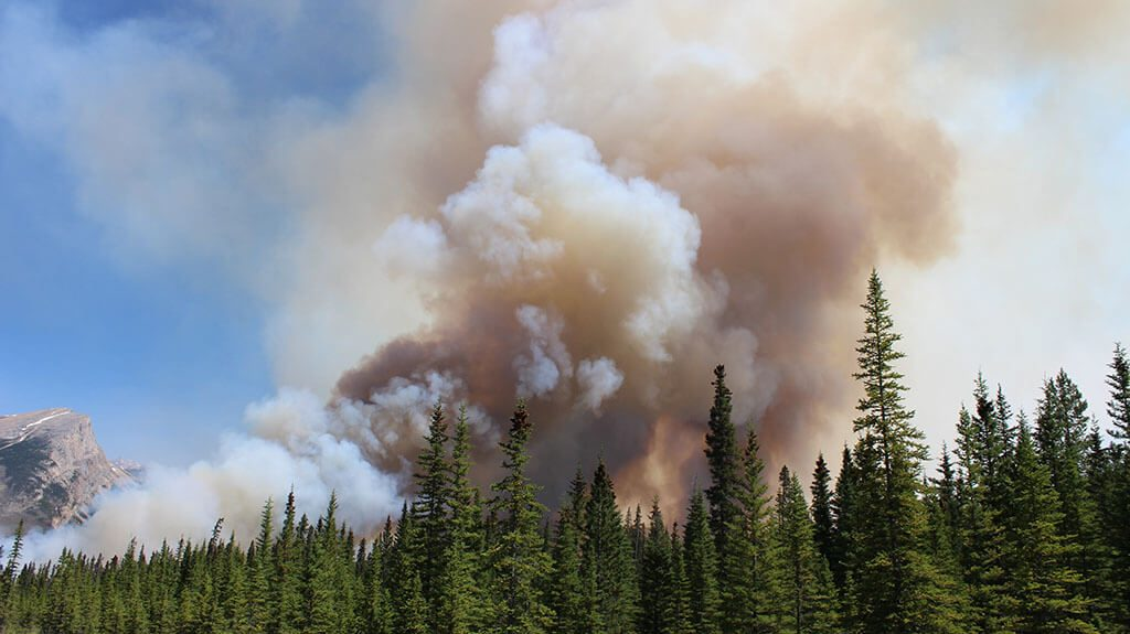 British Colombia Forest Fire