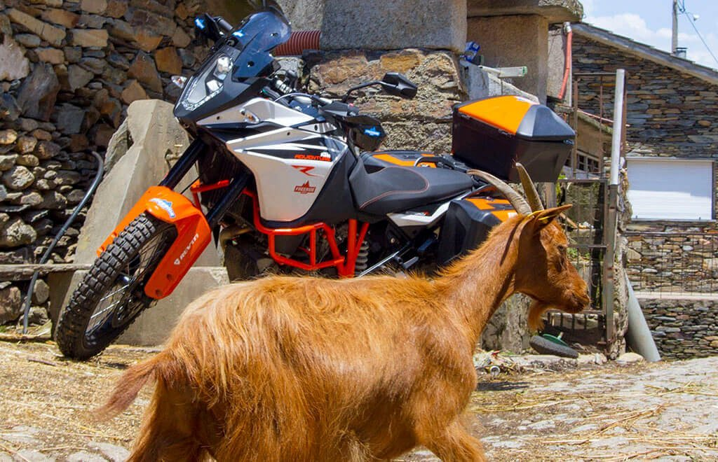 Portugal Motorcycle Travel and Tour Guides bike and goat